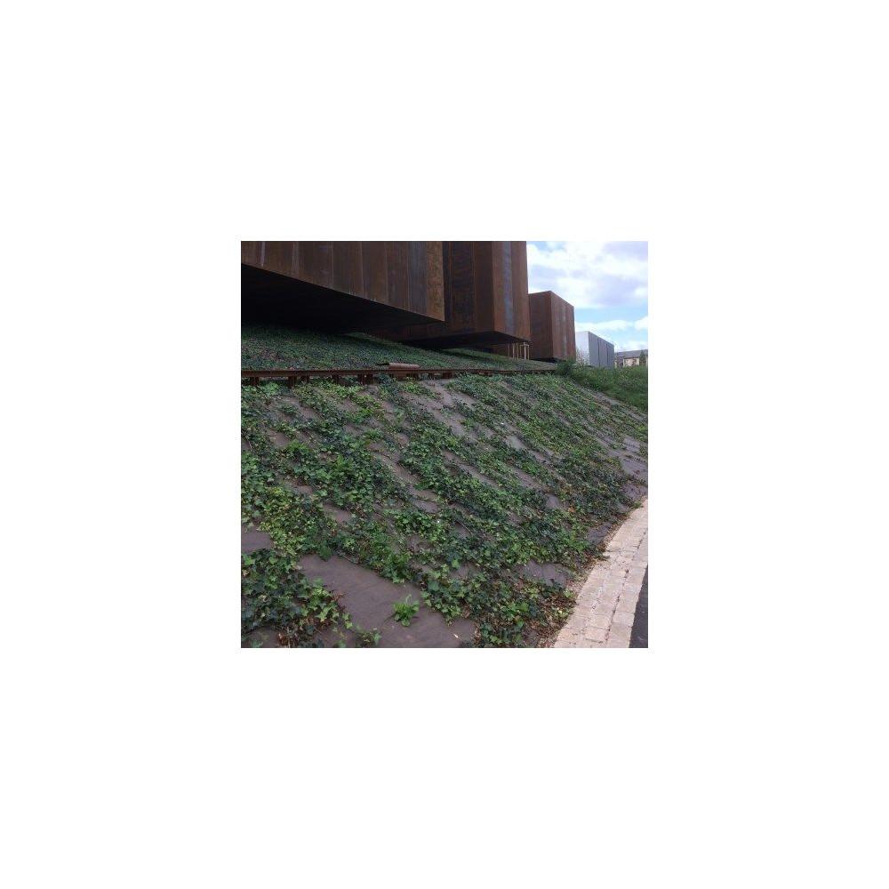 Toile de paillage DURACOVER anti-UV 5 ans biodégradable 130g/m2, long. 100 m