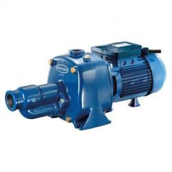 Pompe Renson fonte 230 V - 1,65 kW