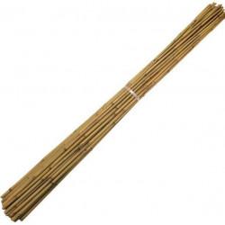 Perches Bambous 295cm - diamètre 24-26mm Paquet de 50
