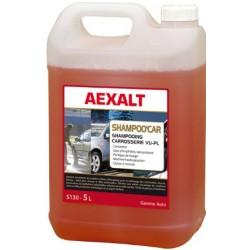 Shampoing Pro antistatique pour Véhicule