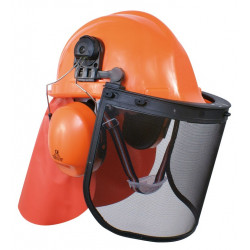 Casque Forestier Professionnel Complet