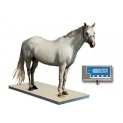 Plateforme de pesage jusqu'à 1500 kg avec écran numérique déporté