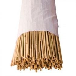 Tuteurs Bambous Extra-Durs