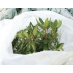 Voile d'hivernage non tissé Spécial Pépinière Lonodis Blanc 30gr/m2 en vente et livré par Agrifournitures.fr