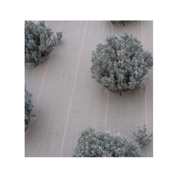 toile paillage marron toile hors sol pro haute r sistance 130 gr m2 rouleau de 100m. Black Bedroom Furniture Sets. Home Design Ideas