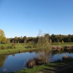 Enherbement Bassins 20kg - 800m² - semences professionnelles