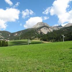 Enherbement Pistes Alpages 20kg - 1000m² - semences professionnelles