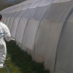 Peinture d'Ombrage ECLIPSE F4 livraison rapide sur agrifournitures.fr