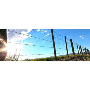 Piquets clôture agricole