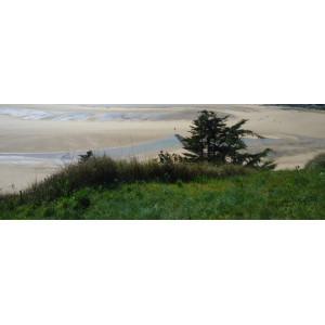 Enherbement camping & littoral