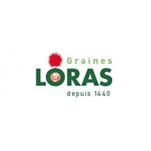 Manufacturer - LORAS